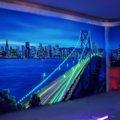 Изображение с флуоресцентными красками